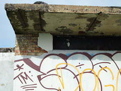 Derelict shelter