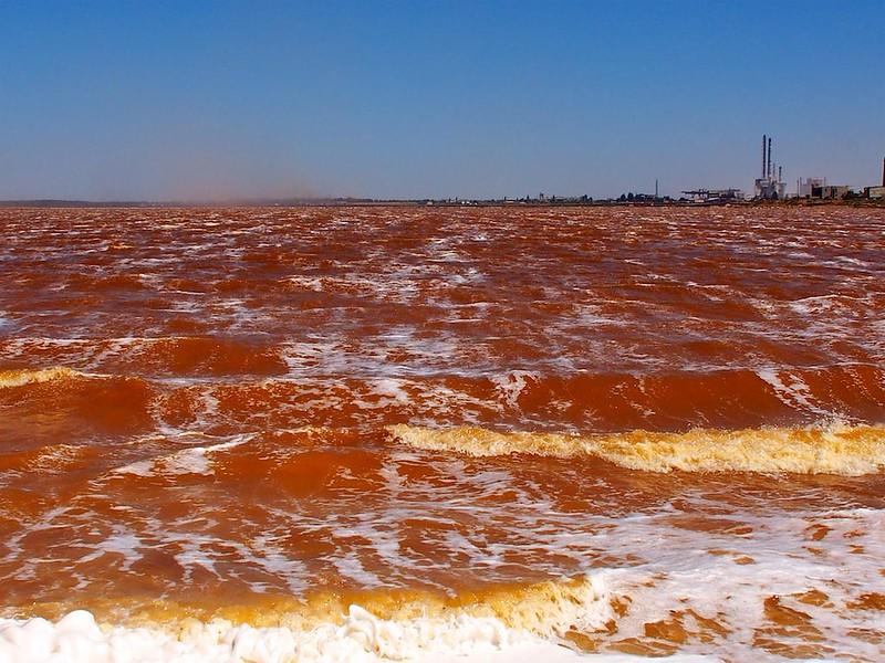 Red salt lake of Perekop - 1