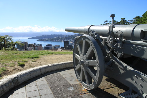 <p>Canon at viewing point Wellington Botanic Gardens.</p>