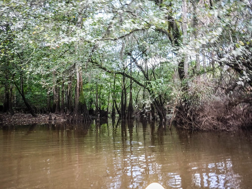 Lynches River with Lowcountry Unfiltered-144