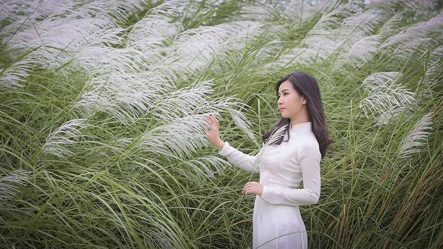 co lau duoi ga - Linh Van Dinh (17)