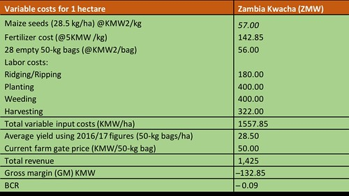 Table summarizing profitability analysis for maize production by the Mumbas. From Africa RISING success story - Farmer finds a sweet spot producing orange-fleshed sweetpotato vines and roots during the dry season in Zambia.