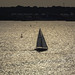 evening sail by -gregg-