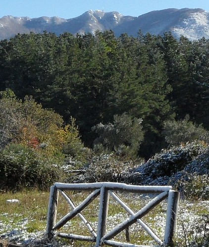 Monte Gelbison (Sa) _ novembre 2013