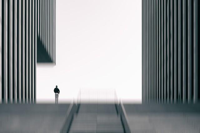 """""""Lost in Architecture"""""""