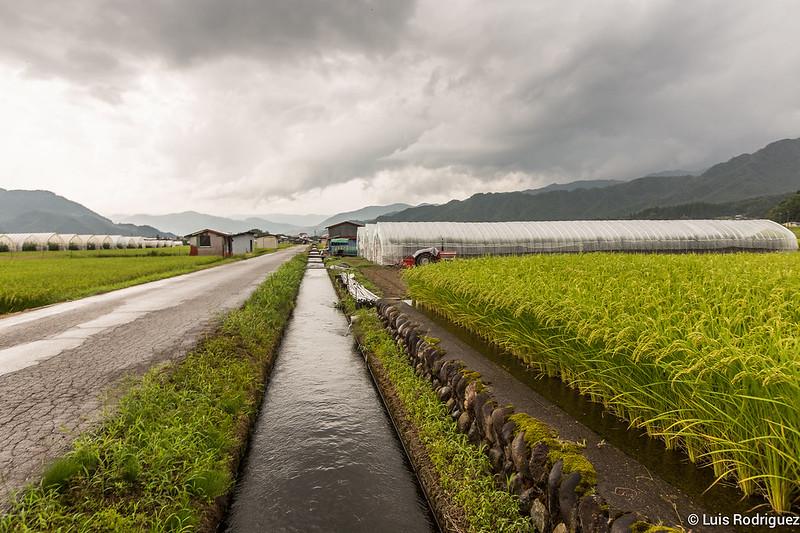 Paseo-bici-Hida-Furukawa-Gifu-14