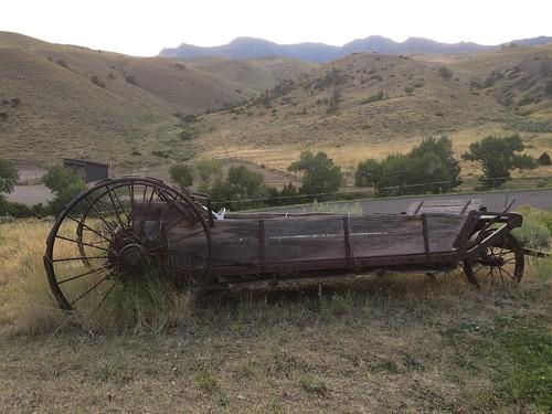 Cody the wagon at the ranch