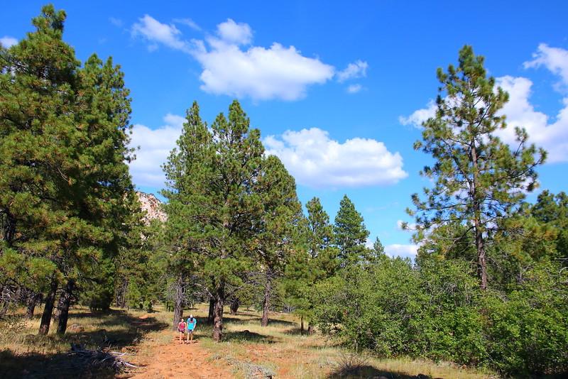 IMG_1283 Northfate Peaks Trail