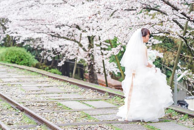 十年,京都四季 | 卷五 | 京都與我,有時還有關西 | 03