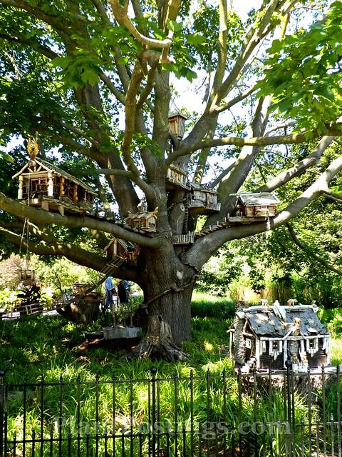 np treehouses