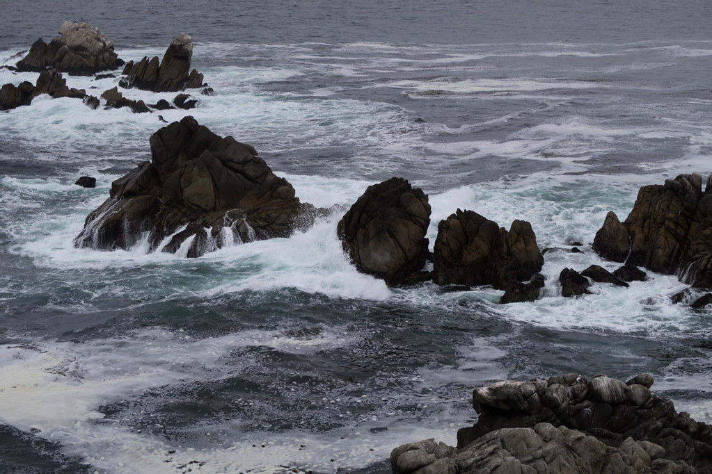 View of rocky coastline from Whalers Cove | Point Lobos State Reserve