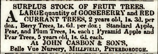 Casbon John and son ad 1876 PBoro advertiser