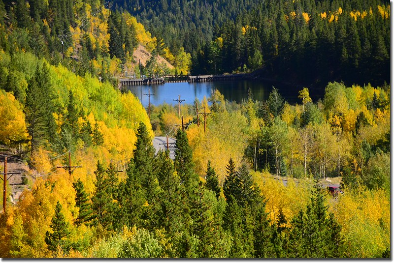 Fall colors, Guanella Pass, Colorado (2)