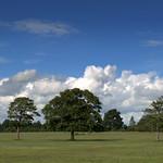 Blue sky over Ashton Park, Preston