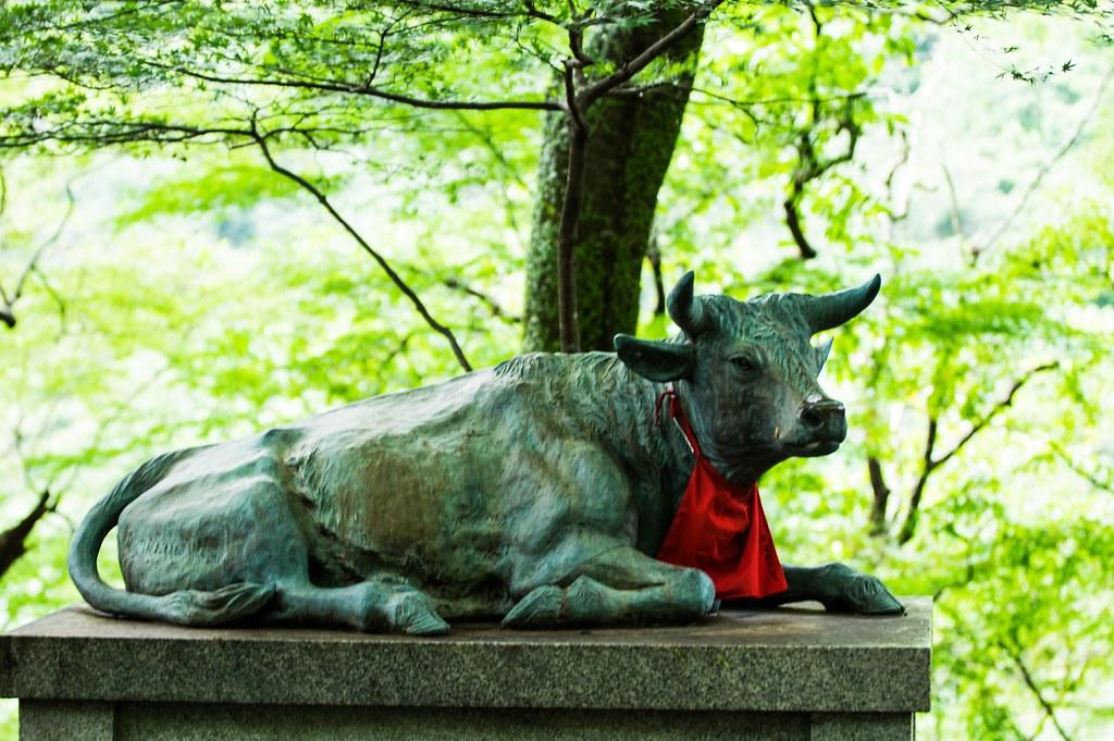 大威徳寺 牛像