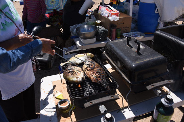 Barbecue Pompano Fishes, Nikon D810, AF-S Nikkor 28-300mm f/3.5-5.6G ED VR