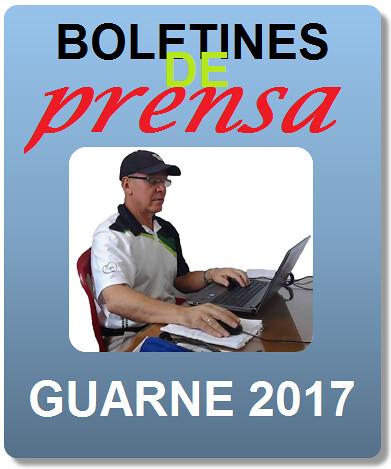 Icono Guarne 2017