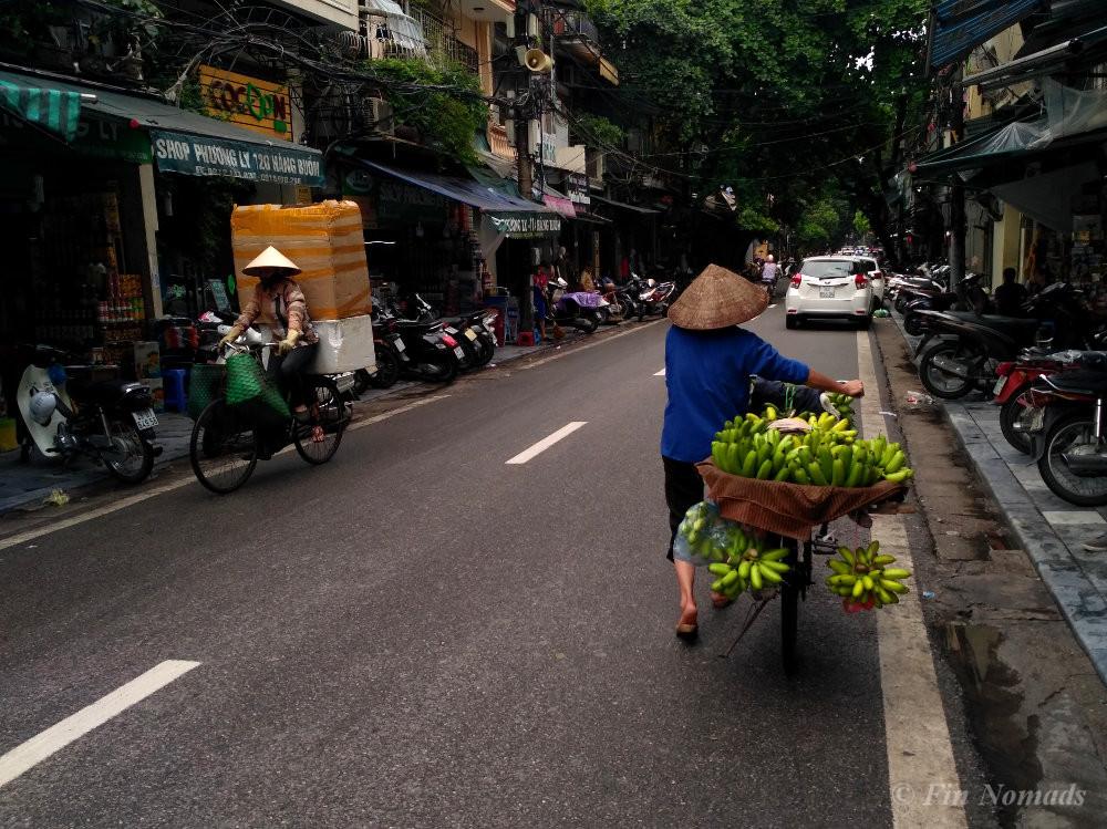 Vietnam budget summary 2