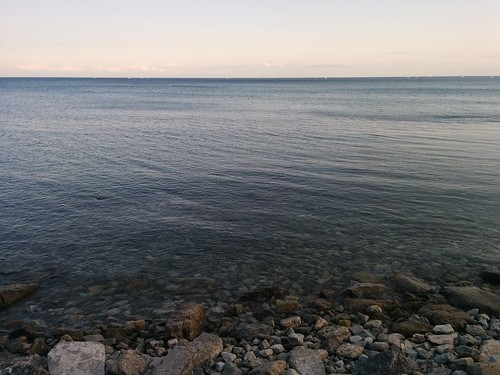 Stony shore #toronto #woodbinebeach #kewbeach #beaches #lakeontario #evening #latergram