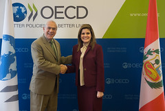 Mercedes Aráoz, Vice President, Peru, at OECD