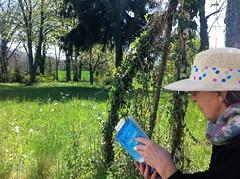 Le livre délivre, ou : le plaisir de la lecture - Photo of Cantaous