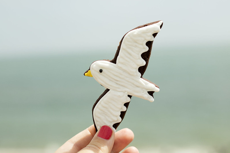 Birds-Biscuits-Biscuiteers