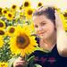 Sunflowers 9: Danica with the Sunflowers