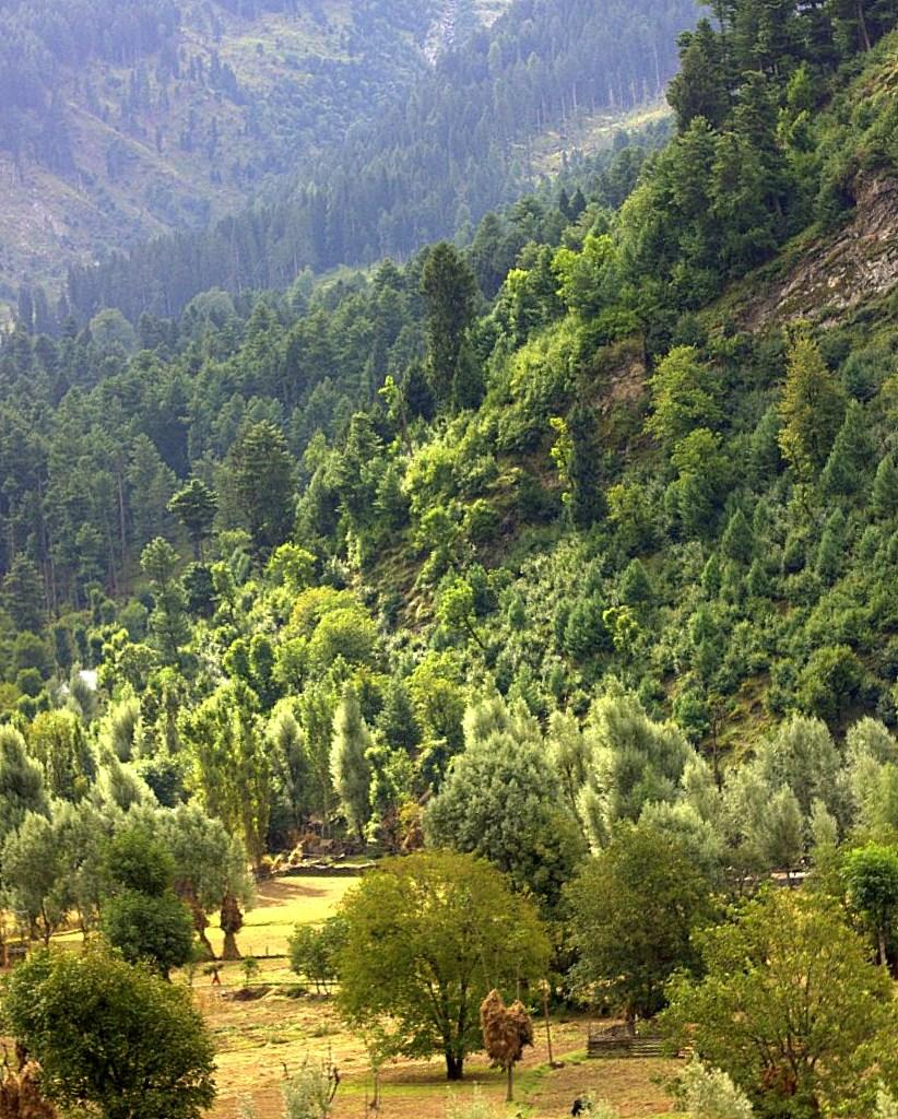 Sonmarg lies on the way on Srinagar Leh road trip