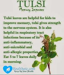 tulsi-benefits-healthoic