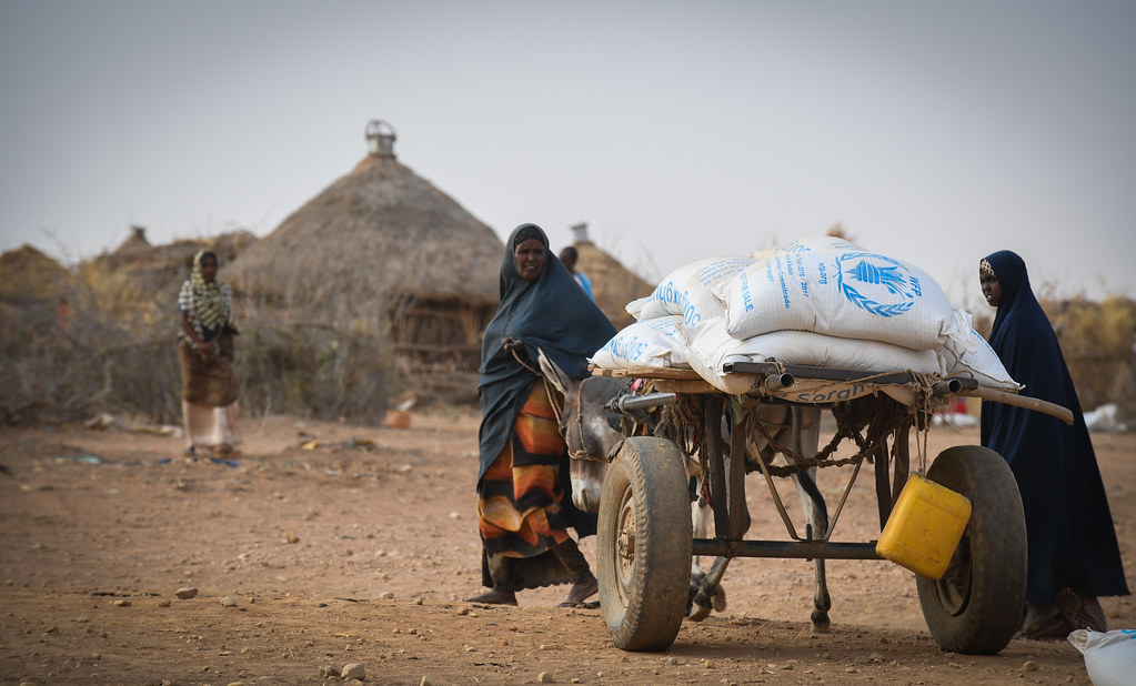 24890_0931 | 31 August, 2017, Somali Region, Ethiopia - Food… | Flickr