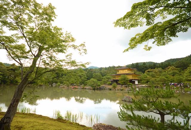 japan itinerary travel guide kinkakuji temple golden pavilion