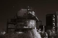 Seattle Gas Works - 8