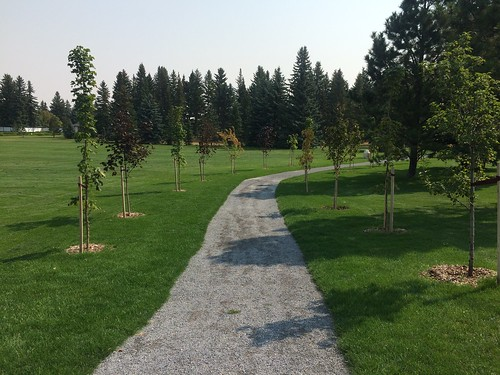 Lethbridge - Henderson Lake walk