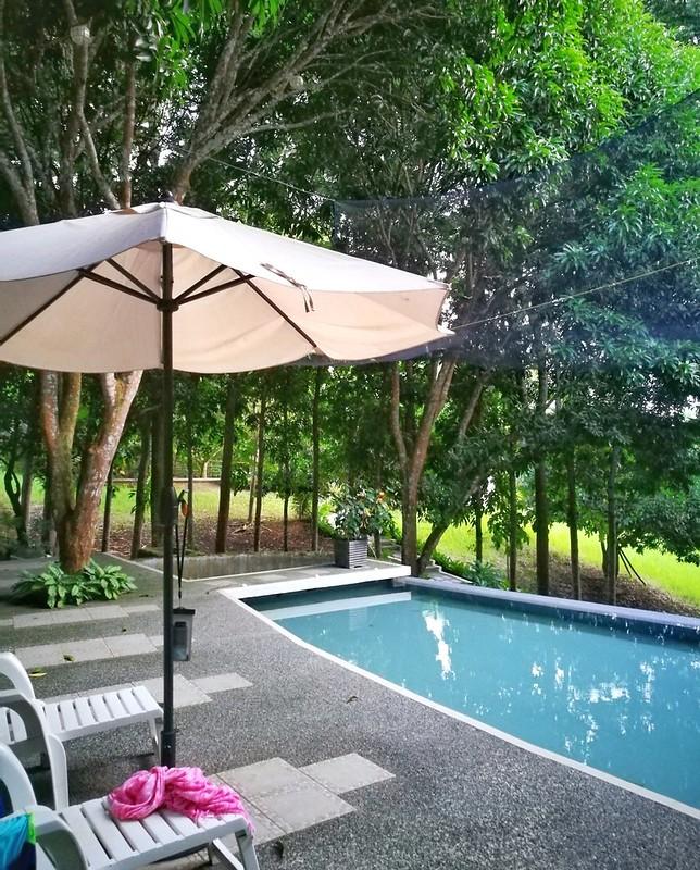 view by the pool | www.wearejuanderers.com