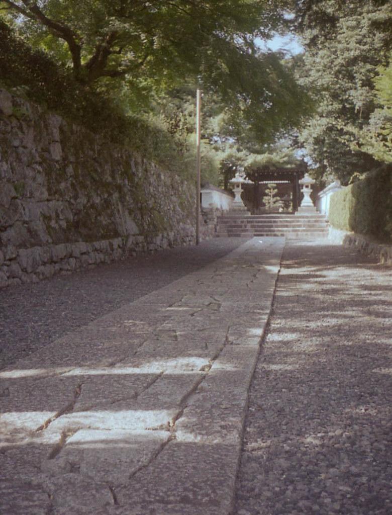 color-19824-2.jpg