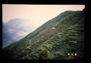 Terrace Farm At 4000m Near Chinchero = チンチェロ近郊、標高約4000Mの段々畑