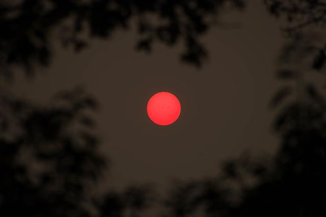 Sun Spots.jpg