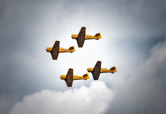 Canadian Harvard Aerobatic Team II