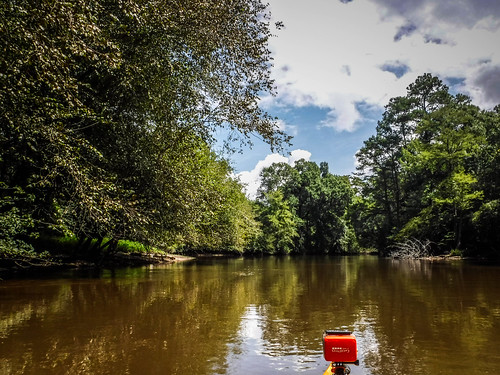 Lynches River with Lowcountry Unfiltered-149
