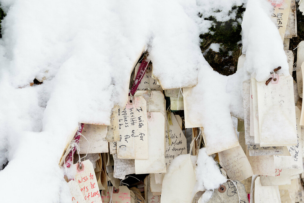 Snow covers wishes and dreams at the Wishing Tree
