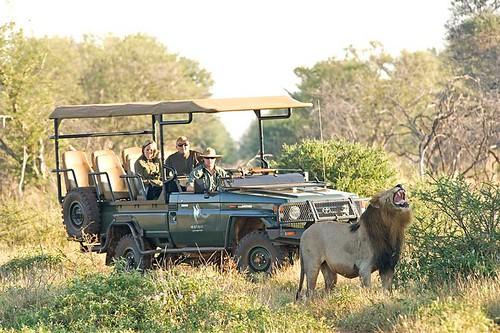 Green car Afrika