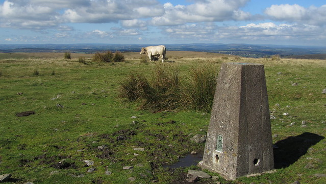 Gutter Tor Trig Point (2)