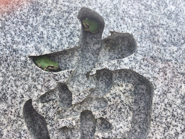 Visit to a grave
