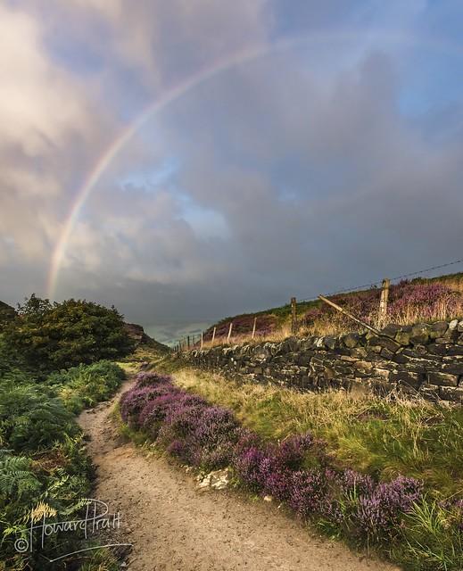 Stormy sunrise rainbow, Nikon D810, AF-S Zoom-Nikkor 14-24mm f/2.8G ED
