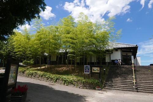 shosukechaya005