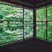 十年,京都四季 | 卷三 | 古都日常 | 28 by euyoung
