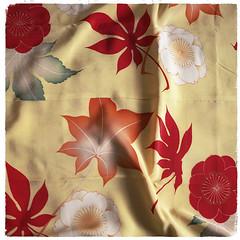 v-kimono