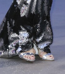 Michelle Hunziker silver shoes
