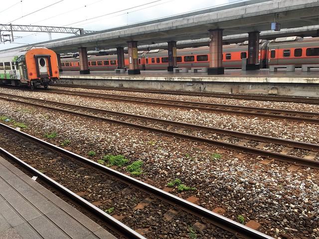 搭乘普悠瑪火車 (8)