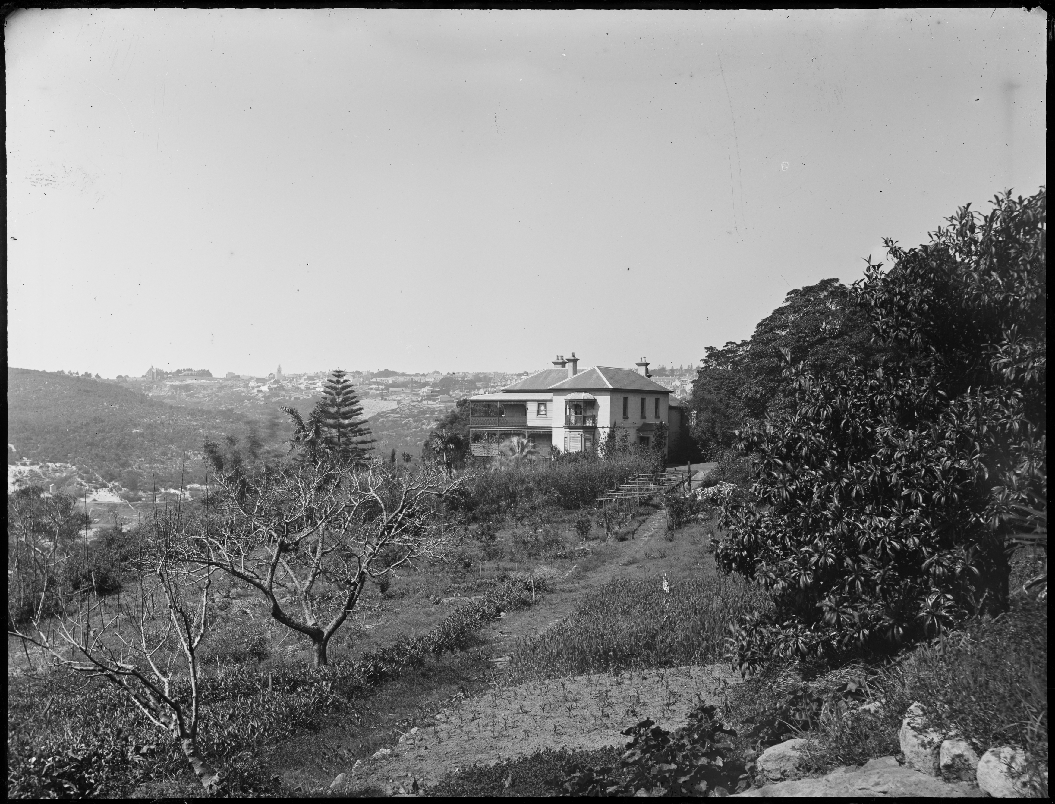 Glass negatives including images of the Sydney and Blue Mountains regions, ca 1890-1910, by William Joseph Macpherson